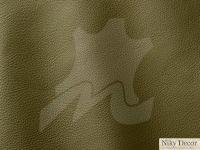 piele-naturala-Prescott-Aloe-256