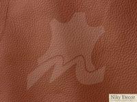 piele-naturala-Prescott-Horse-398