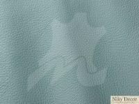 piele-naturala-Prescott-Lichene-265