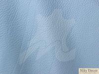 piele-naturala-Prescott-North-Pole-277