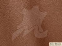 piele-naturala-Prescott-Swamp-223